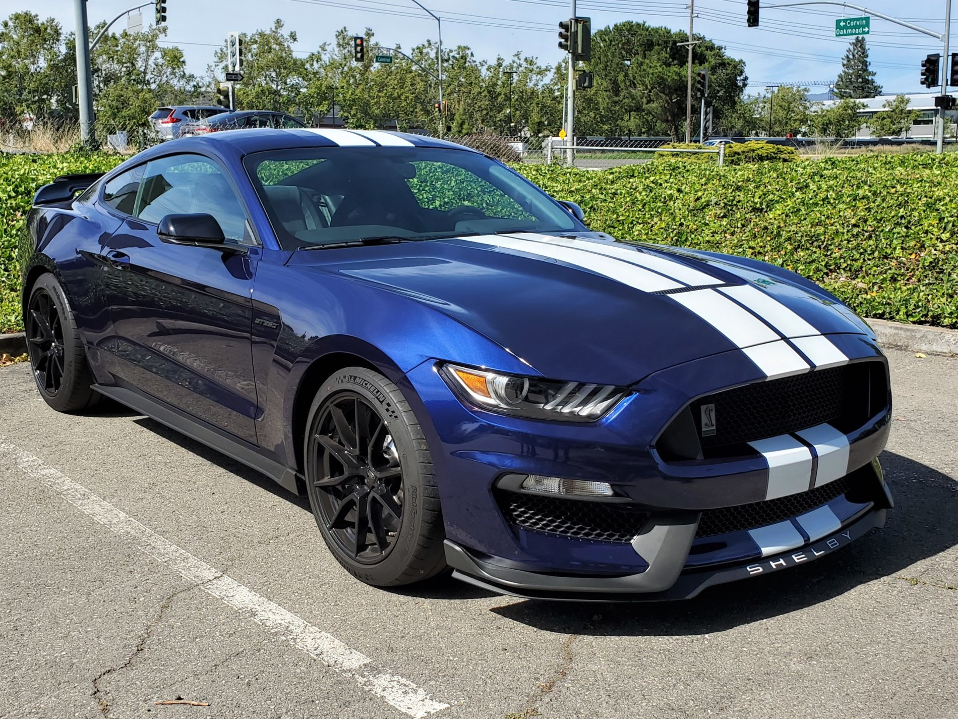 Mustang Mach 2 >> New owner - 2019 GT350, Kona Blue w/ White Stripes | 2015 ...