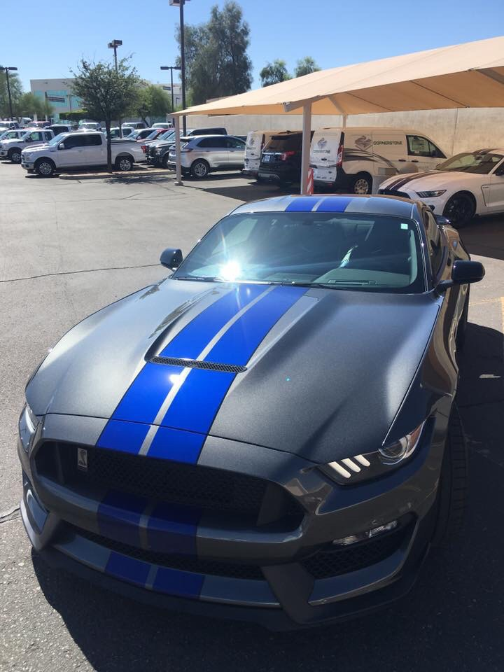 Stripe Colours On Magnetic Grey Gt 2015 S550 Mustang