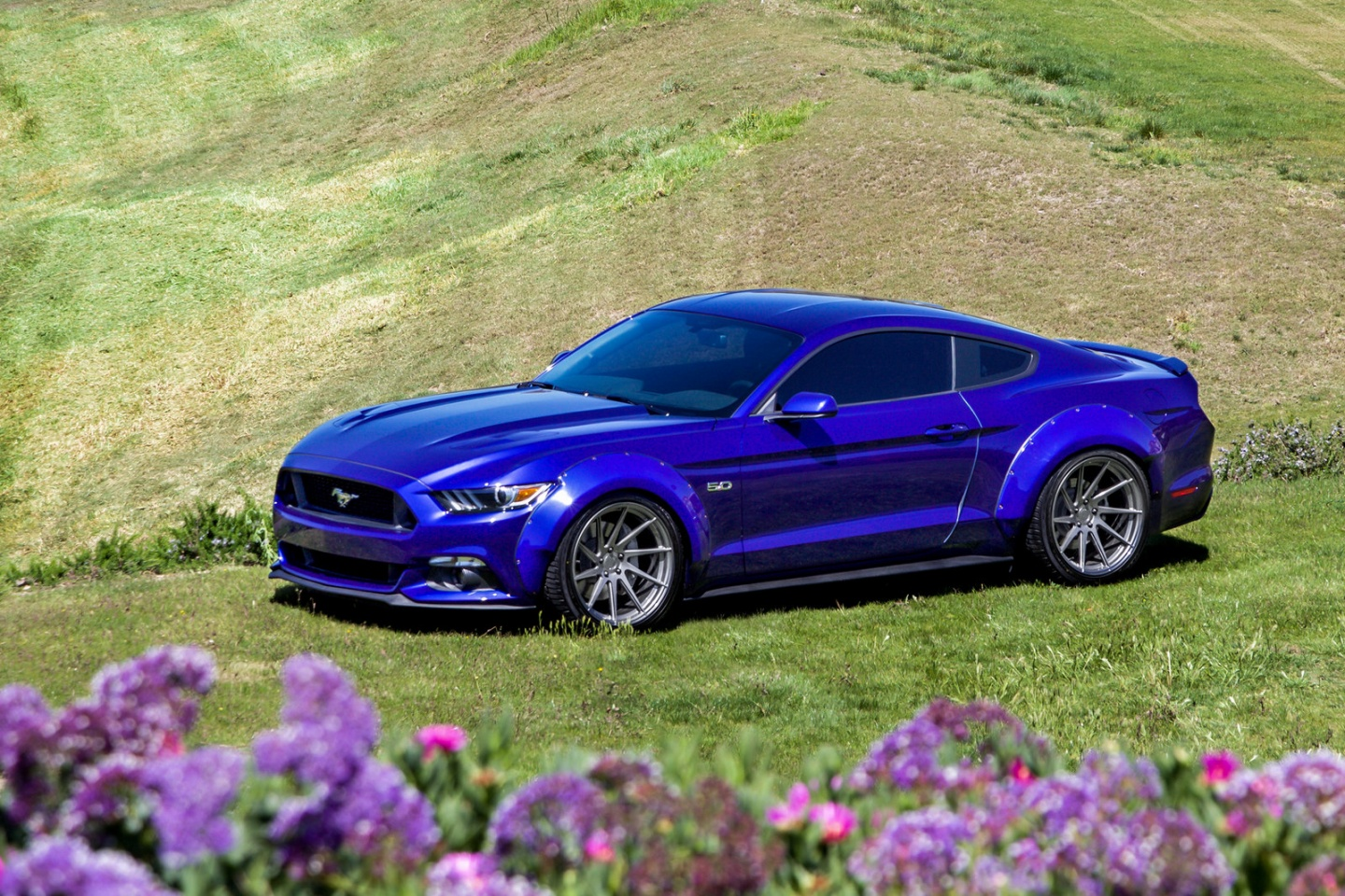 ford-mustang-gt-s550-avant-garde-m621-directional-rotory-forged-concave-wheels.jpg