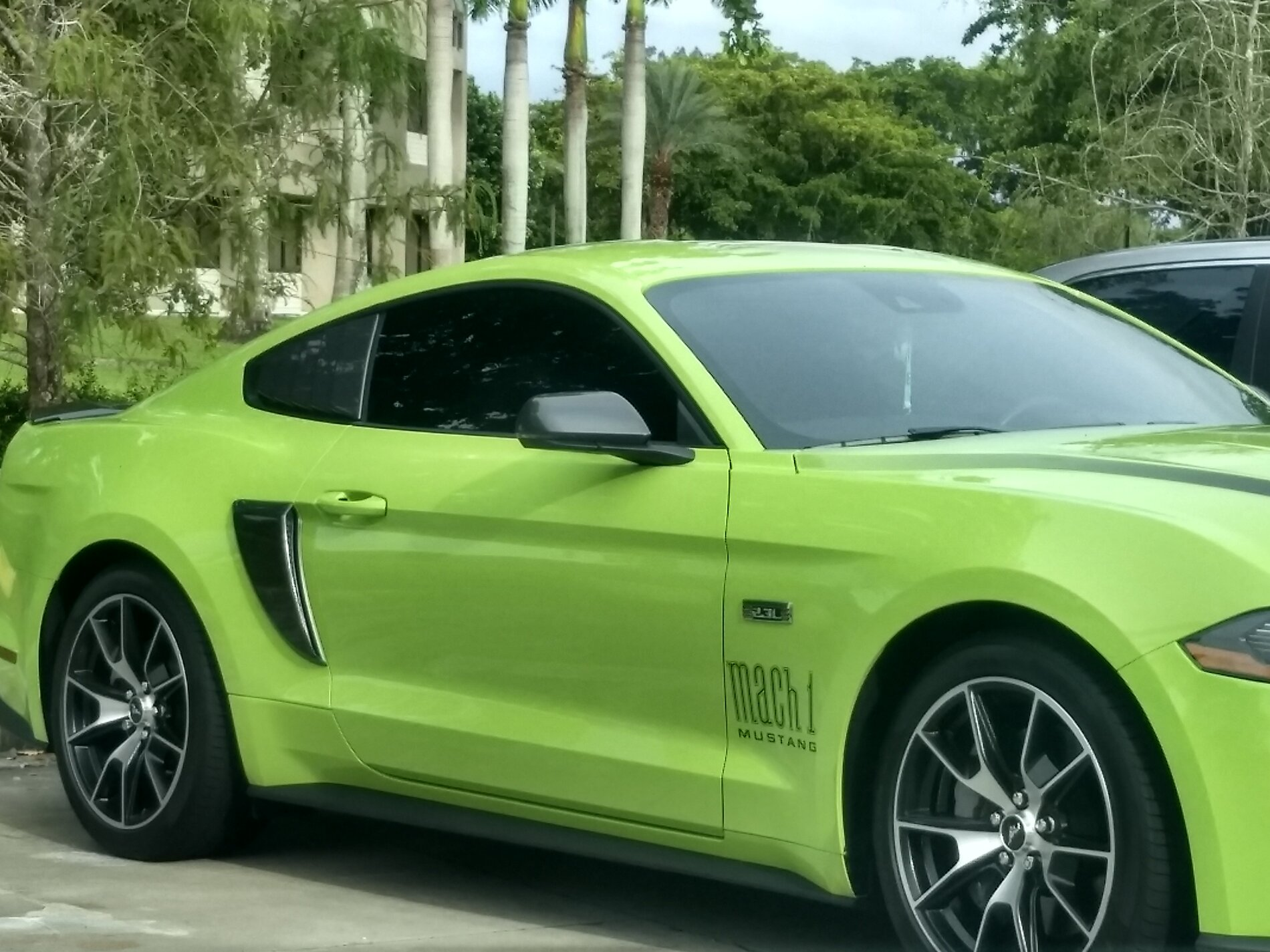 HPP Mustang with Mach1 stickers 1.jpg