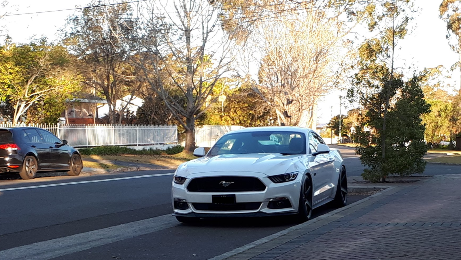Mustang parked.png