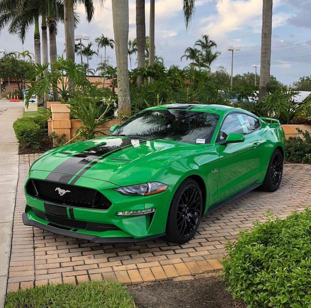 mustang green need s550 ford gt gt500 bullitt thread forum mustang6g ecoboost crimson discussed royal gt350