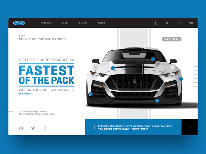 shelby-dribbble-3.png