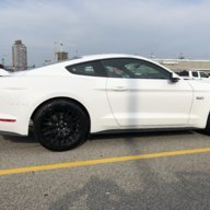 Cat Delete Worth it? (2018 Mustang GT) | 2015+ S550 Mustang