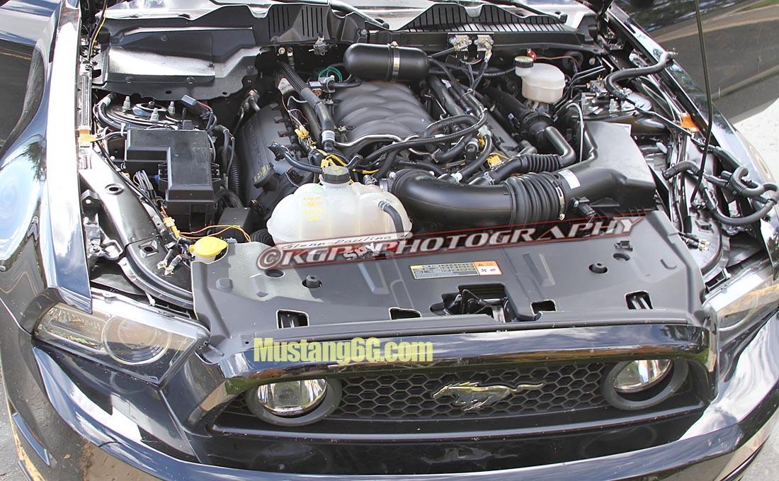 MustangMule.co4.KGP.ed-2199324683-O