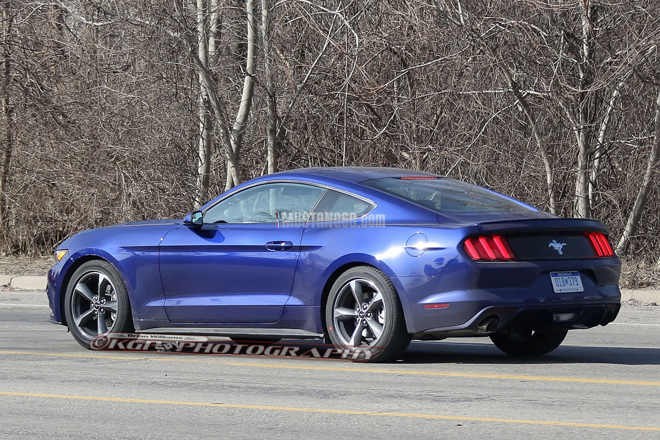 2017 Mustang Gt350 Black >> Large Batch of 2015 Mustangs with new options, wheels, combinations | 2015+ Mustang Forum News ...