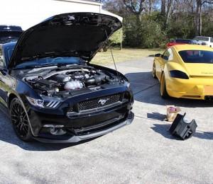 MOTM 2015 Mustang GT SVTDSM