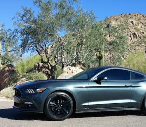 MOTM: 2015 Mustang EcoBoost Build - EcoSnake