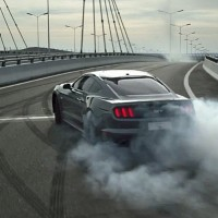 2015 Mustang Year of the Horse