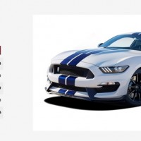 Shelby GT350 Mustang Options