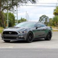 2015 Mustang GT MOTM