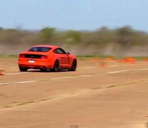 MOTM 2015 Mustang GT Autocross