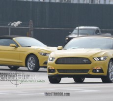 2016 Mustang EcoBoost Pony Package