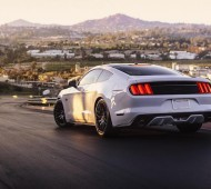 MOTM 2015 Mustang GT PP Camilla