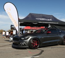 auto enthusiast day 2015 mustangs