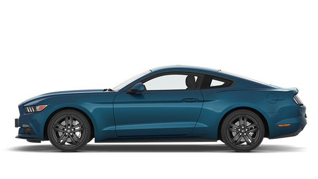 First Images of 2017 Mustang Colors | 2015+ Mustang Forum News Blog