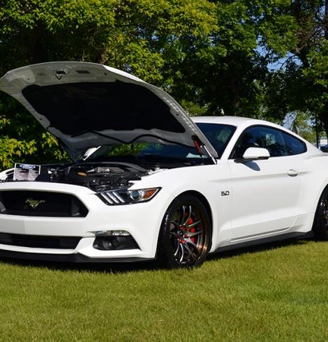 MOTM z2xreme's Oxford White 2015 Mustang GT