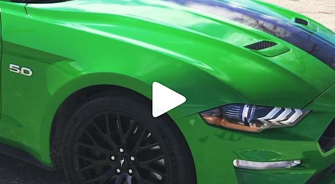 Video: Need for Green 2019 Mustang | 2015+ Mustang Forum News Blog (S550 GT, GT350, GT500, I4 ...